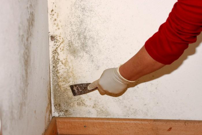 Daños por humedades viviendas